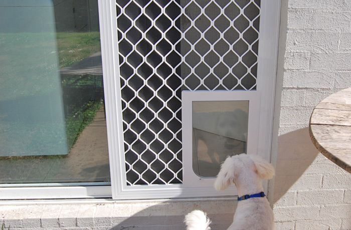 Large White Doggy Door (6 Colours Available) ...